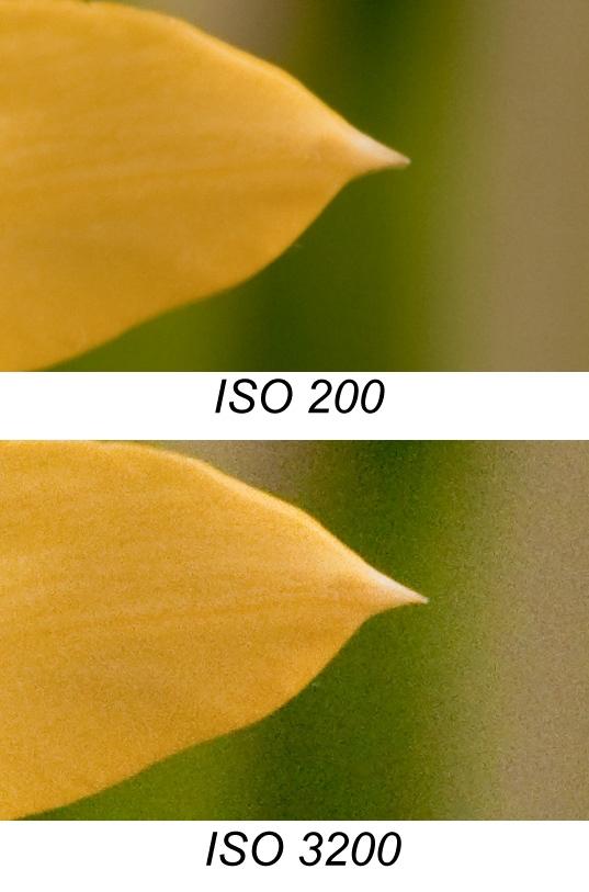 ISO-talets betydelse