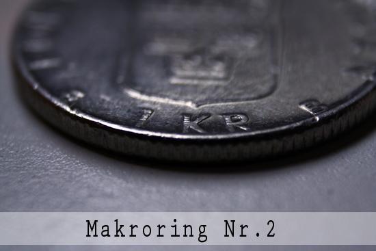 Makroring nr.2