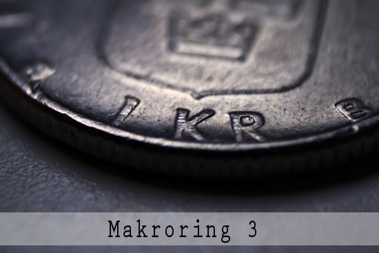 Makroring nr.3